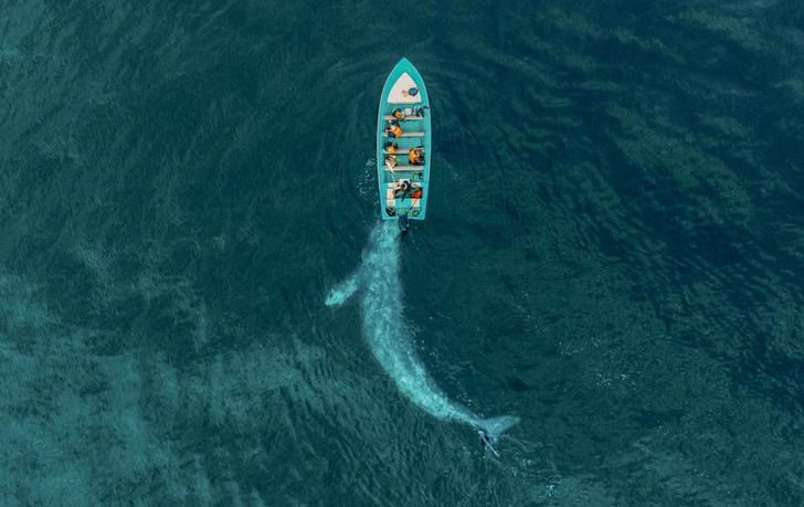 Фото №1 - Игра с лодкой