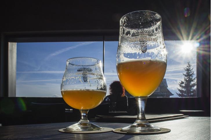 Фото №1 - Как регион проживания влияет на потребление алкоголя