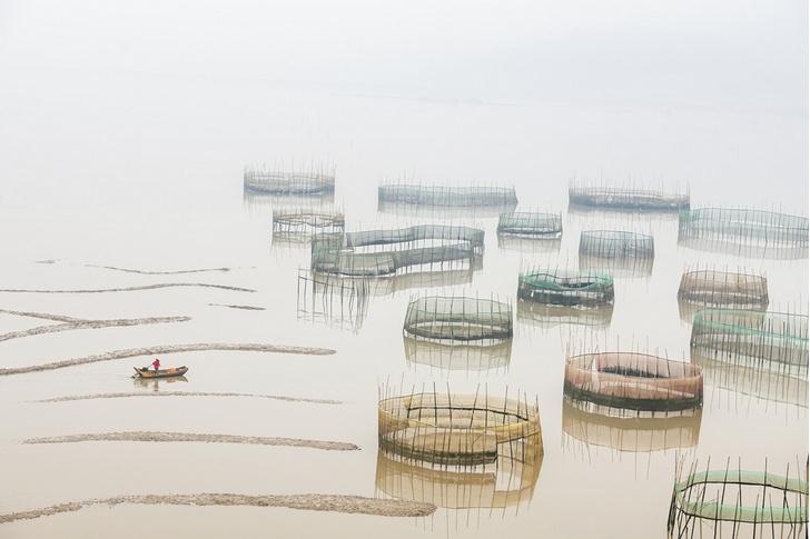 Фото №1 - Сбор моллюсков