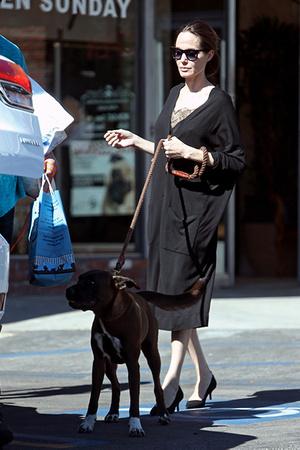 Фото №13 - Почему Анджелина Джоли — снова икона стиля, или Что такое luxe purism
