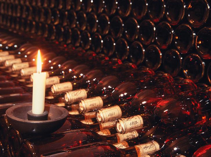 Фото №9 - Вино с приставкой «bio»: кто ввел тренд на биодинамические вина и где их искать
