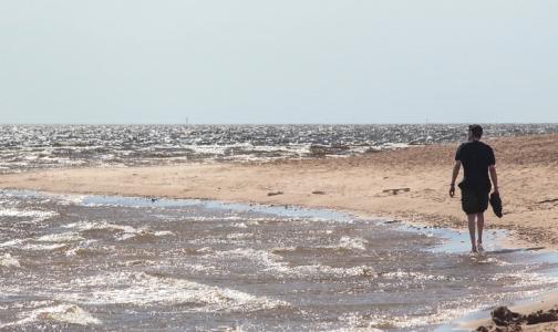 Фото №1 - В Петербурге пригодной для купания признали воду на пяти пляжах