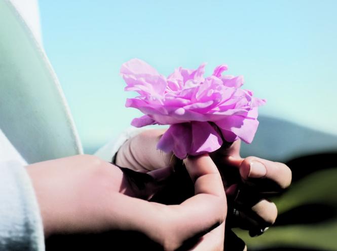 Фото №2 - Натали Портман и Франсуа Демаши на розовых полях Dior