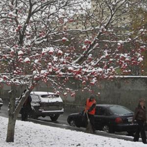 Фото №1 - Москву парализовало снегом