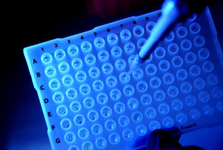 Фото №1 - Ученые успешно протестировали препарат, убивающий раковые клетки