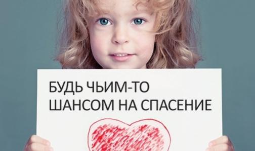 Фото №1 - Молодых петербуржцев запишут в потенциальные доноры костного мозга
