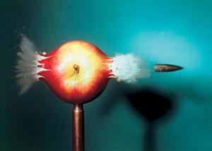 Фото №5 - Временной микроскоп