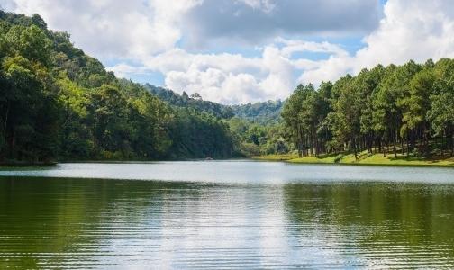 Фото №1 - В Роспотребнадзоре назвали пригодные для купания озера и реки Ленобласти