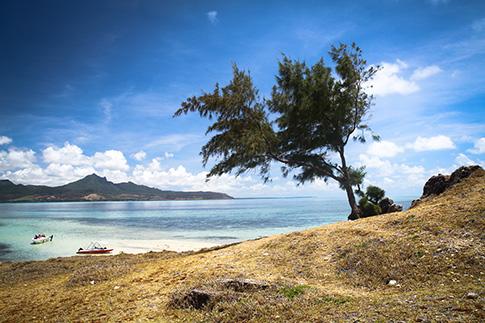 Фото №3 - На волне: кайтсерфинг на Маврикий