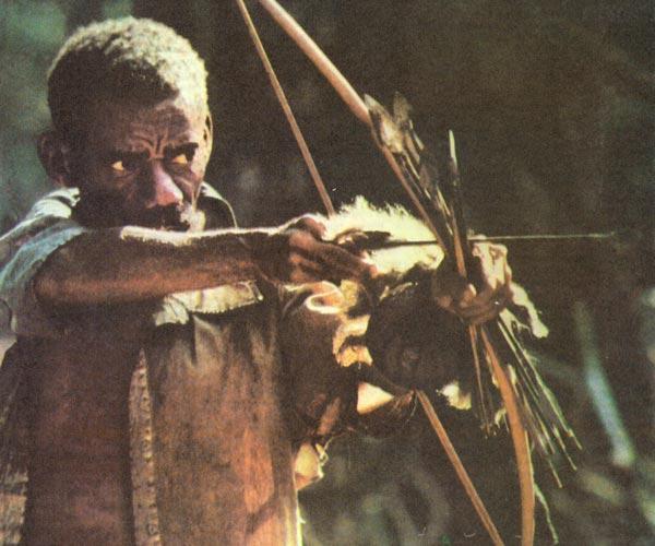 Фото №1 - Мальчик с пальчик из леса Итури