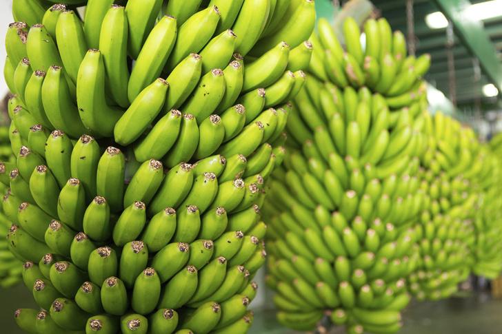 Фото №1 - Бананы оказались под угрозой исчезновения