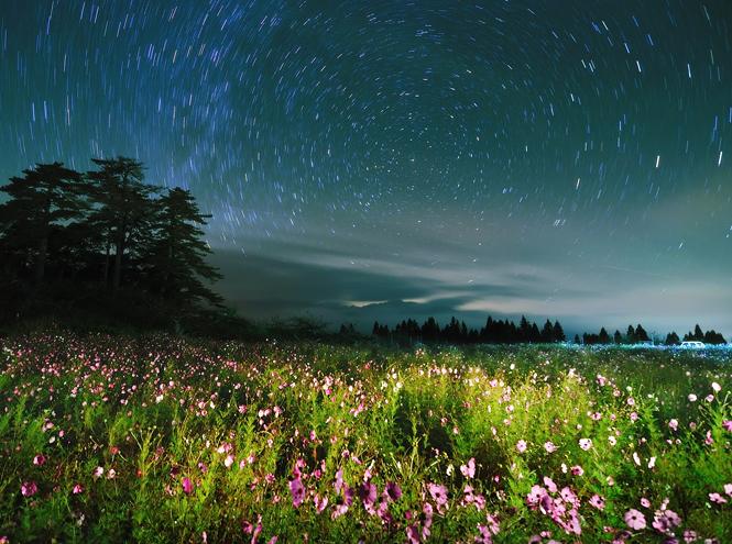 Фото №10 - Звездная карта: самые красивые фото ночного неба