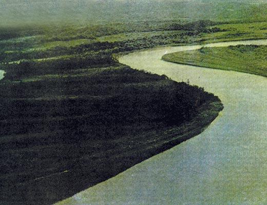 Фото №1 - Затерянные в болотах. Часть I