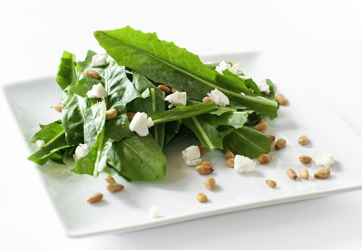 Фото №1 - Как сделать салат из одуванчиков (плюс рецепт желе из них же)