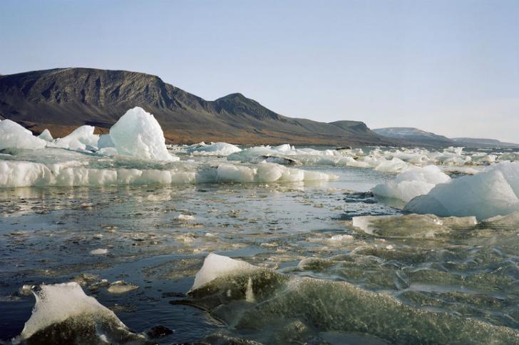 Фото №2 - «Новая Земля. От Ледника Розе до залива Абросимова»: в Галерее Классической Фотографии открылась уникальная выставка