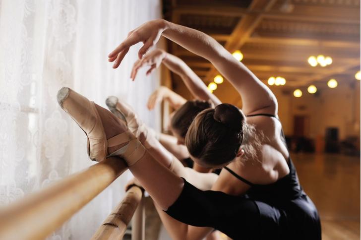 Фото №3 - Танцующие собаки, «сценический бой» и мастер-классы: лучшие события фестиваля «Мировые балетные каникулы» для детей