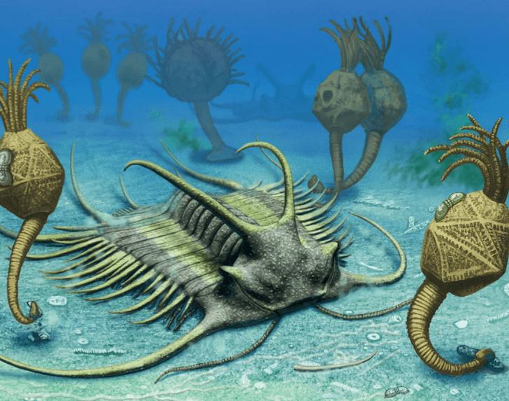 Фото №1 - От Балтики до Алтая: 5 удивительных древних чудовищ России