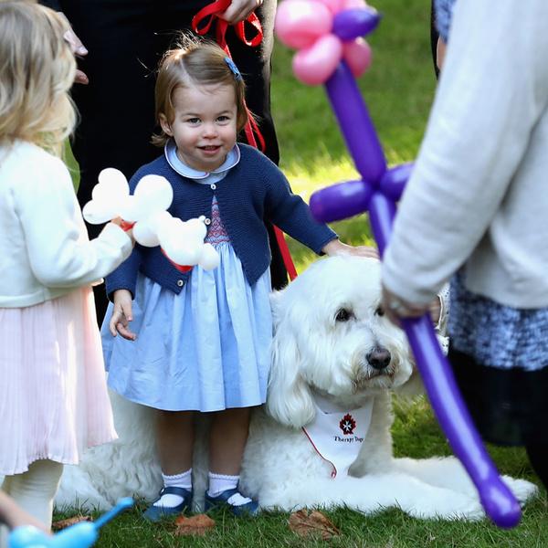 Фото №17 - Принцесса Шарлотта на своем первом светском мероприятии в Канаде