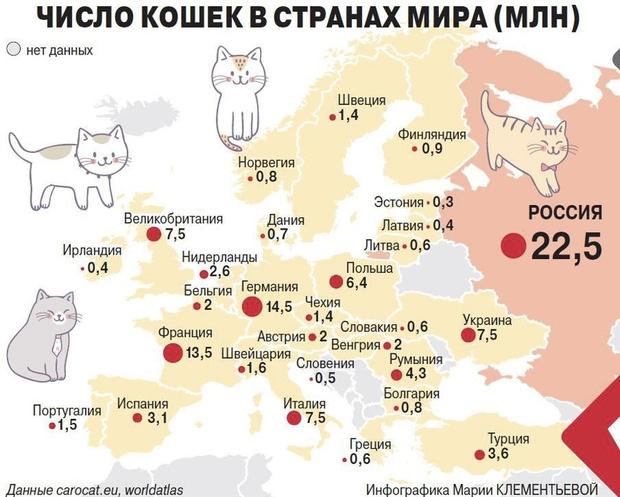 Фото №2 - Карта: сколько котов живет в разных странах Европы