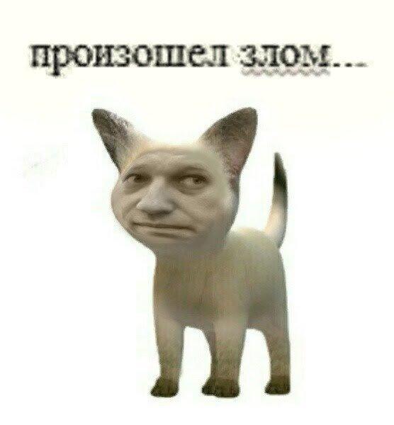 Фото №1 - Шалость удалась: почему взломали группы ВКонтакте