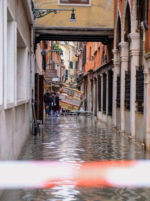 Фото №1 - Летучая в сапогах гуляет по затонувшей Венеции