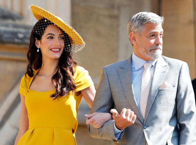 Фото №9 - Самые любопытные факты из впечатляющей биографии Джорджа Клуни