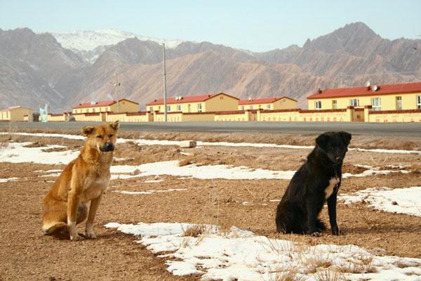Фото №3 - Стужа в уйгурском захолустье