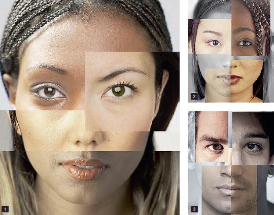 Фото №1 - А есть ли расы?
