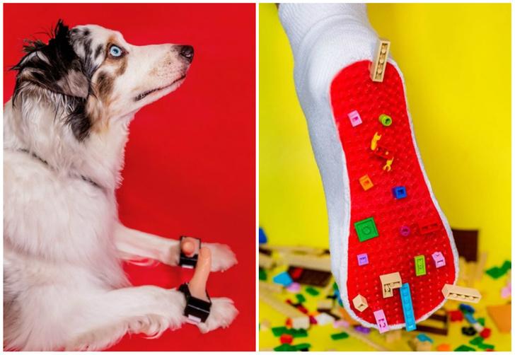 Фото №1 - Большие пальцы для собаки и 10 других идиотских изобретений, которые нам срочно нужны