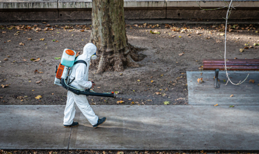 Фото №1 - За сутки коронавирус выявили у 238 петербуржцев