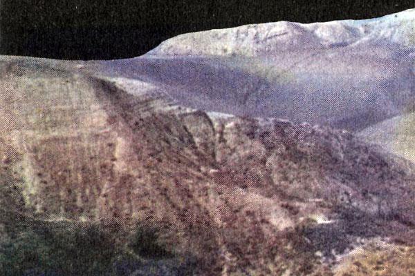 Фото №1 - Гостеприимная пустыня