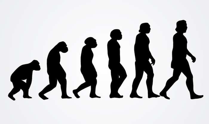 Фото №1 - Глава патриаршей комиссии по вопросам семьи: «Теория Дарвина совершенно ненаучна»