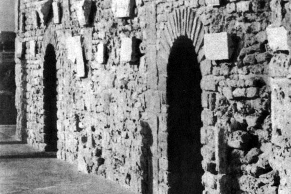 Фото №1 - Карфаген не должен быть разрушен