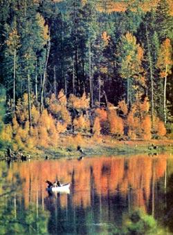 Фото №3 - Бледнолицые и краснокожие