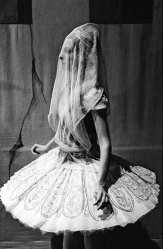 Фото №3 - Балет, кино и фотография в Люмьерах