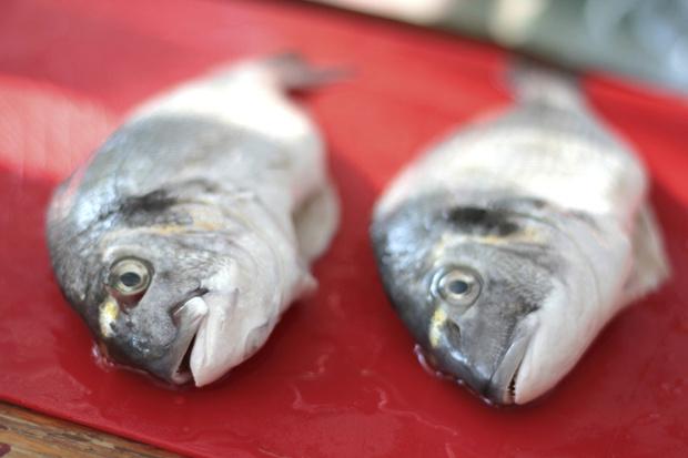 Фото №2 - Средиземноморская диета: для похудения, для здоровья, для красоты