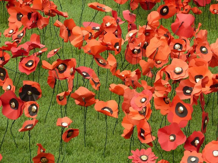 Фото №1 - Цветы войны, беседы у камина и шоу с бомбами: 3 пиар-кампании века