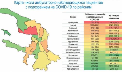 Фото №1 - Эксперты составили карту районов Петербурга, где больше всего лечащихся от коронавируса дома