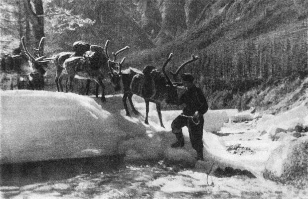 Фото №2 - Ледники Кодара