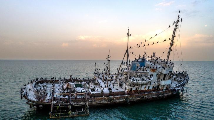 Фото №1 - Последнее пристанище