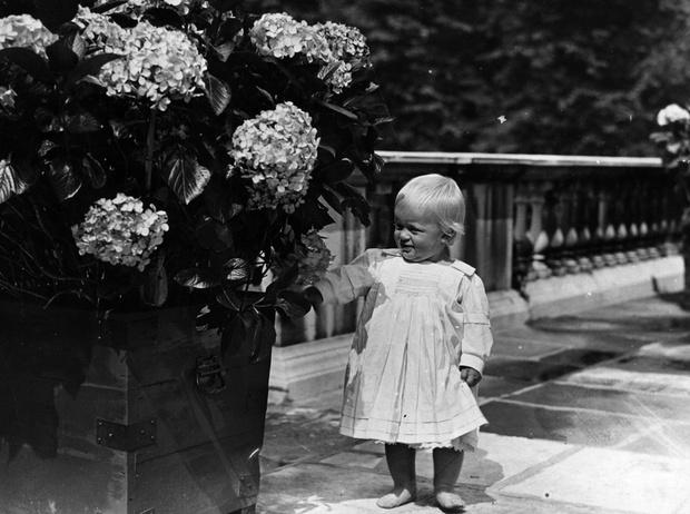 Фото №2 - Принц Филипп и его семья: как тяжелое детство сформировало характер супруга Елизаветы II
