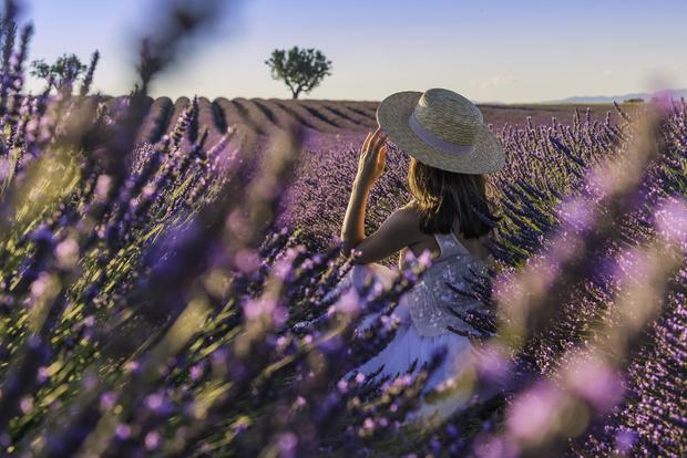 Фото №1 - Цветочный гороскоп: растения, которые притягивают любовь