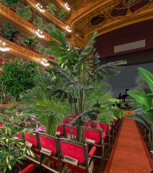 Фото №3 - В Барселоне устроили концерт для растений