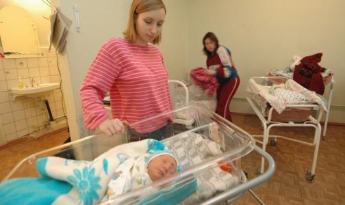 Фото №1 - На пороге демографического спада в Петербурге увеличили объемы ЭКО