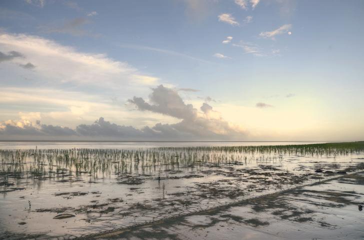 Фото №2 - Нелатинская Америка: загадочная Гайана в 10 фотокарточках