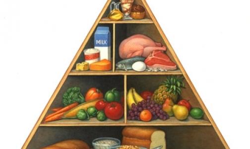 Фото №1 - Пища должна быть лекарством