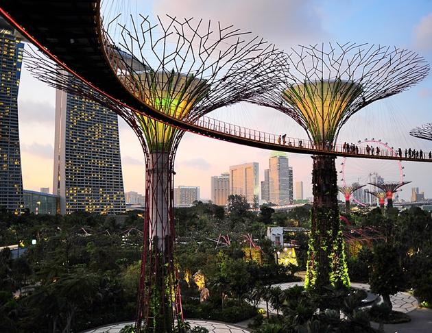 Фото №1 - Дороже только в Сингапуре