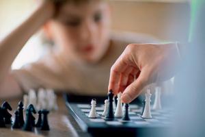 Фото №3 - Учим ребенка играть в шахматы: как и зачем