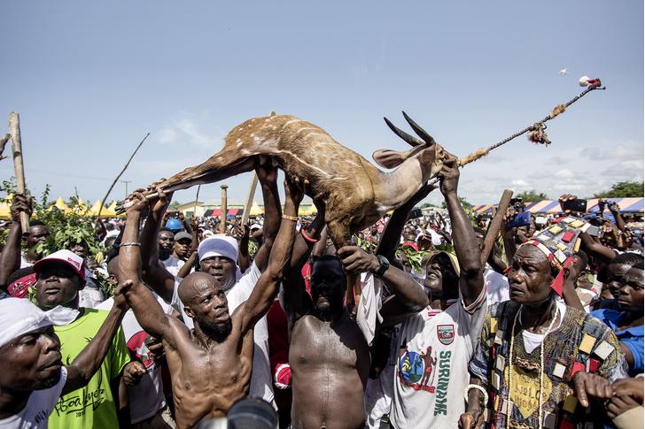 Фото №1 - Традиции: погадать на антилопе