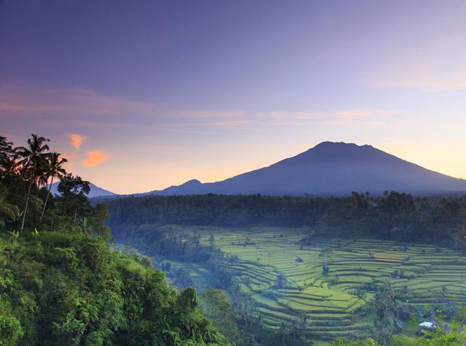 Фото №6 - Slow life на Бали: что это и чем она так привлекает европейцев